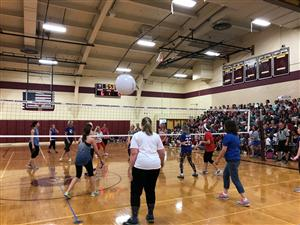 teachers playing volley ball